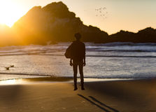Silhouette of Man Standing in Beach during Golden Hour Royalty Free Stock Image