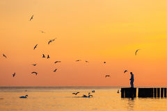 Silhouette of a man standing on a breakwater Royalty Free Stock Photography