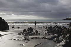 Silhouette Man Standing At Coastline. Full length side view of a silhouetted man standing at coastline Stock Images
