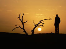 Silhouette of man and sunset Stock Images