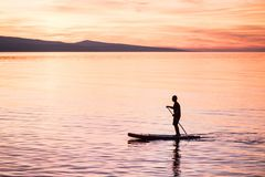 Silhouette of man at sunset standing on paddle board. Summer beach leisure activity. stock photography