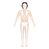 Silhouette man system bone with hair Stock Images