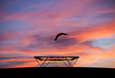 Silhouette of man on trampoline in sunset Stock Image