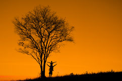 Silhouette of a man with a tree Stock Photo