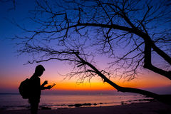 Silhouette man using smartphone. With dead tree and sunset beach background Stock Photography