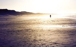 Silhouette man walking on the beach Stock Images