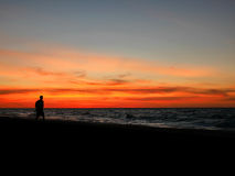 Silhouette man walking on sunset beach. Silhouette of man walking on sunset beach Royalty Free Stock Images