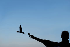 Silhouette of a man who feeds a seagull with a biscuit. Meals rich from tourists for seagulls. It seen in silhouette image of a tourist that offers a biscuit to stock photo