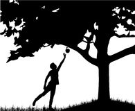 Silhouette of man. Royalty Free Stock Photo