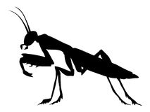 Silhouette of mantis Royalty Free Stock Photography