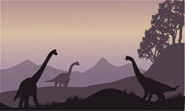 Silhouette of many brachiosaurus Royalty Free Stock Photography