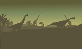 Silhouette of many brachiosaurus in hills Royalty Free Stock Photos
