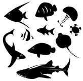 Silhouette marine animal and reptile such as shark, sea turtle, Royalty Free Stock Photography