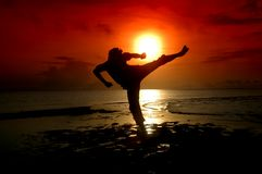 Silhouette of a martial arts warrior. Silhouette of a warrior parried with a sunrise background Royalty Free Stock Photography