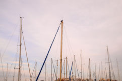 Silhouette Masts Stock Photography