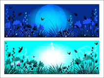 Silhouette of meadow grass and flowers Stock Photo