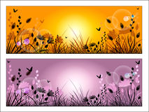 Silhouette of meadow grass and flowers Royalty Free Stock Photography