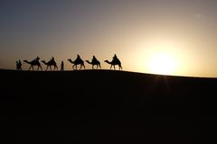 Silhouette of Men Riding Camels on Desert during Sunset Stock Photography