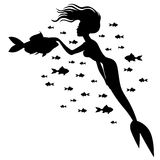 Silhouette mermaid and fish Stock Images
