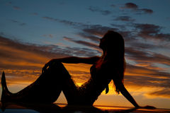 Silhouette Mermaid Hand Knee Profile Royalty Free Stock Photography