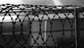 SILHOUETTE METAL RAZOR WIRE FENCING Stock Image