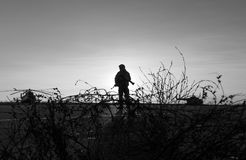 Silhouette of a military man Royalty Free Stock Image