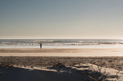 Silhouette, minimalist photo of woman photographer shooting on a Florida beach. Vintage overlay; Photo of woman senior photographer taking a photo of the waves Stock Photos