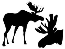 Silhouette of moose Stock Photo