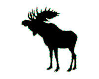 Silhouette of a moose Stock Image