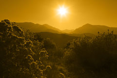 Silhouette of Mountain Range Layered in Yellow Stock Image