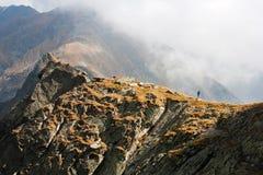 Silhouette on a mountain ridge Stock Photos