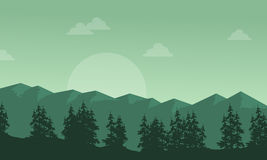Silhouette of mountain with spruce scenery Royalty Free Stock Image