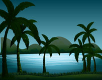 Silhouette nature scene with coconut trees Stock Photography