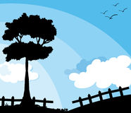 Silhouette nature scene with tree Royalty Free Stock Photo