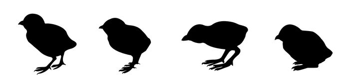 Silhouette nestling Stock Photography
