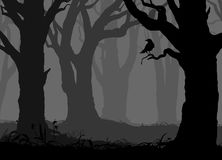 Silhouette of a night forest with a crow. Silhouette of the night forest with old trees and crow on the branch, vector illustration Stock Photography