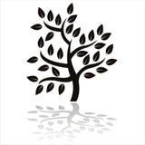 Silhouette noire d'arbre Photographie stock libre de droits