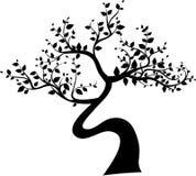Silhouette noire d'arbre d'isolement sur le fond blanc Image libre de droits
