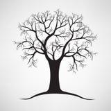 Silhouette noire d'un arbre nu Illustration de vecteur Photos stock