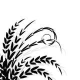 Silhouette noire de branchement illustration de vecteur