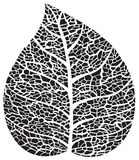 Silhouette noire de squelette de feuille illustration libre de droits