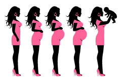 Silhouette Of A Pregnant Woman And A Woman With Child Stock Images