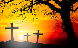 Silhouette Of Cross Of Jesus Christ With Big Tree On Backlight A Royalty Free Stock Photography