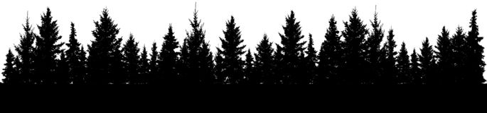 Free Silhouette Of Forest Fir Trees. Vector Stock Images - 126219754