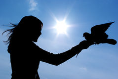 Free Silhouette Of Gril And Bird Royalty Free Stock Photo - 11641705