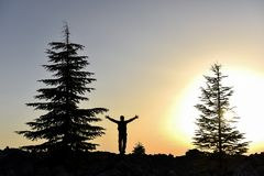 Free Silhouette Of Man And Trees At Sunset Royalty Free Stock Photos - 118679908