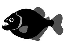Silhouette Of Piranha
