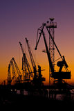 Silhouette Of Several Cranes In A Harbor Royalty Free Stock Images