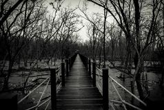 Free Silhouette Of Wood Bridge With White Rope Fence In Forest. Branches Of Trees In The Cold Forest With Gray Sky Background In Black Stock Images - 108873224