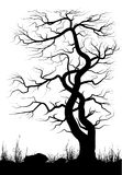 Silhouette of old tree and grass Stock Photography